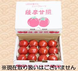 shop_03_003